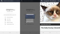 Dolphin Zero lets you privately browse the web
