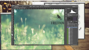 10 best photography programs to make your photos stand out