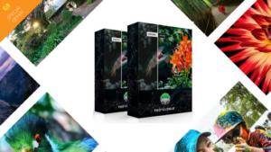 Effortless enhancement with PhotoLemur v2.2 Spectre