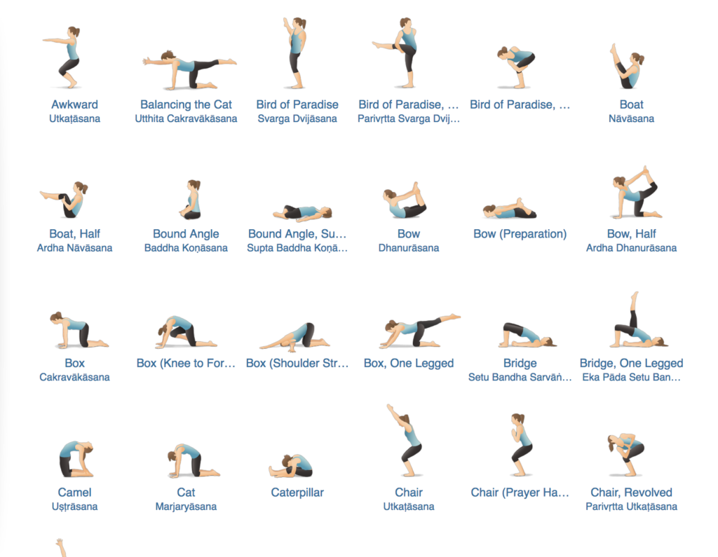 Pocket Yoga pose guide