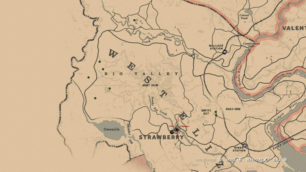 red dead redemption 2 duchesses quest map 3