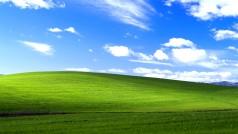 Il wallpaper di XP raccontato in video. Bliss, le colline che hanno fatto la storia