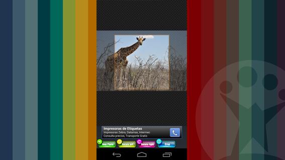 Photo crop screenshot