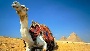 Le piramidi di Giza e l'Antico Egitto su Google Maps
