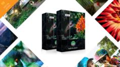 Melhoramento de fotos sem esforços com PhotoLemur v.2.2 Spectre