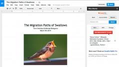 Google Drive startet Add-Ons für Dokumente und Tabellen