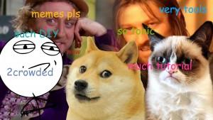 Eigene Meme erstellen: Der Meme Generator
