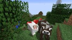Kostenpflichtige Minecraft-Server: Was die neuen Nutzungsbedingungen erlauben und verbieten