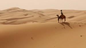 Google Maps: Mit Street View reisen Sie auf dem Kamel durch die Wüste zur Liwa-Oase