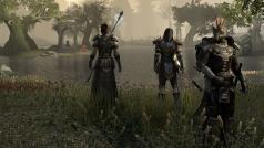 The Elder Scrolls Online: les temps de lancement sont connues