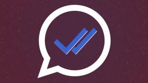 Podwójne niebieskie potwierdzenie WhatsAppa, czyli jak przeczytać wiadomości, aby nikt o tym nie wiedział