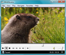 Media Player Classic a punto de colgarse
