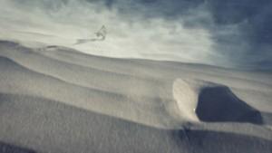 Halo 5: aparece su primera beta falsa