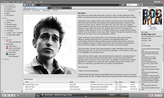 MusicBee é considerado um dos sucessores do Winamp
