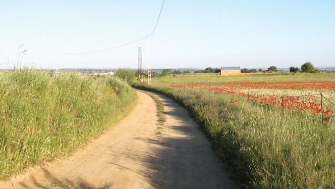 Viajar, ir al trabajo... las apps para moverse por España