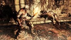 Fans de Dark Souls 2 se transforman en monstruos para asustar a otros