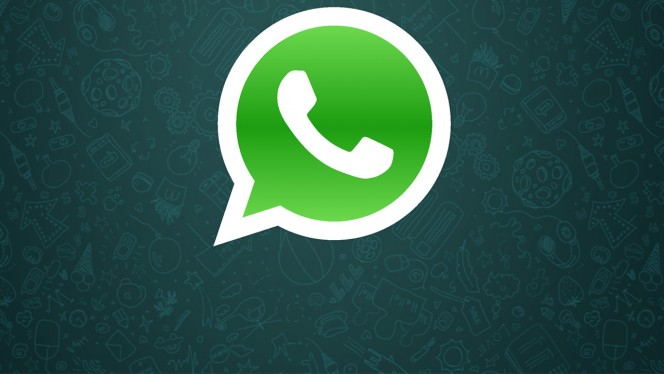 Todo sobre WhatsApp