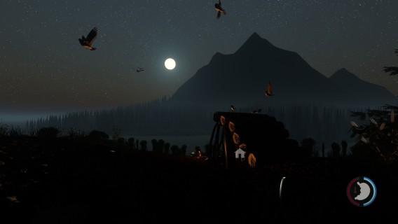 Visão noturna da floresta