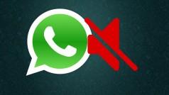 WhatsApp: no te salgas del grupo, siléncialo durante un año