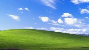 Windows 8.1. es más usado que Win XP… pero por poco