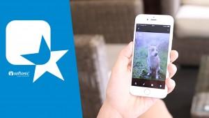 Organiza todas tus fotos con Google Fotos, nuestra app de la semana