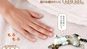 Lanzan un pijama para los auténticos fans de los gatos: es más adorable de lo que crees