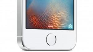 iPhone 5SE o iPhone 6C: primera imagen del nuevo iPhone de 4 pulgadas