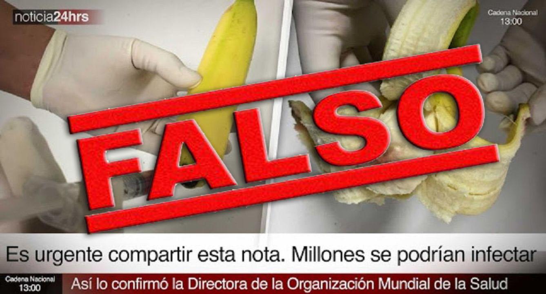 platanos-malignos-falso