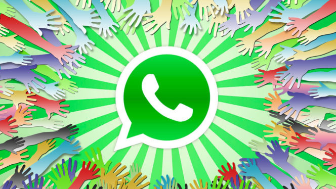 whatsapp-solidario