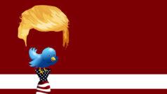 Un empleado de Twitter borra la cuenta de Donald Trump