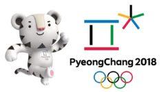 Hackean los Juegos Olímpicos de Invierno