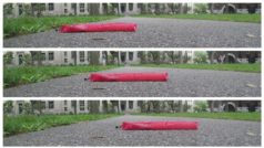 Un robot-serpiente merodea por Harvard gracias a la piel sintética