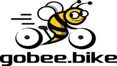 Unos vándalos acaban con un negocio de alquiler de bici en Francia