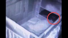 Una cámara registra a un intruso fantasmal que espía al bebé de la familia
