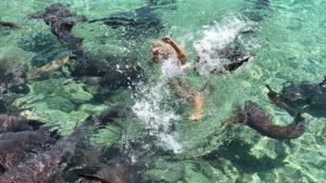 Tiburón muerde a una influencer de Instagram obsesionada en conseguir la foto perfecta