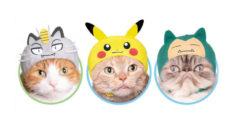 Ya puedes disfrazar a tu gato de Pokémon con estos gorritos