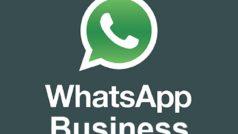 WhatsApp Business llega a la App Store en algunos países, México es el primero