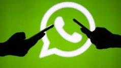WhatsApp: cómo tener estadísticas curiosas de tus chats