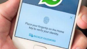 WhatsApp no nos dejará hacer capturas de pantalla de los chats que estén bloqueados con huella