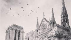 Twitter se convierte en un centro de apoyo para París tras el desastre de Notre Dame