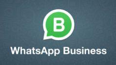 WhatsApp Business está probando los stickers y el permiso de privacidad de los grupos