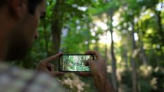 Las mejores aplicaciones para mejorar tus fotos de este verano