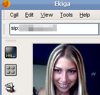 Ekiga screenshot