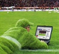 Get closer to the action with TvAnts