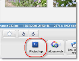 Picasa customized buttons