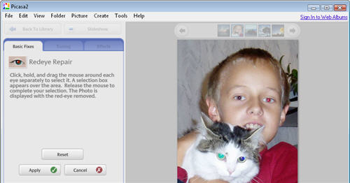 Quick photo fixes with Picasa