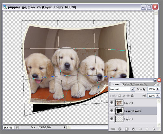 Warp Selection Paint Net