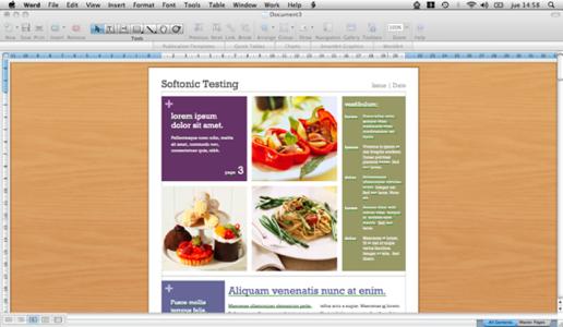 Microsoft Word 2008
