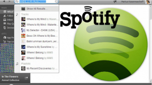 Spotify Search: Find music faster with filters