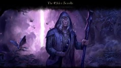 Elder Scrolls Online: Full test of the Beta version